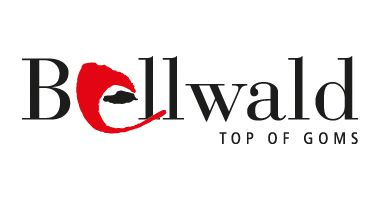 Bellwald_2015_Logo_red